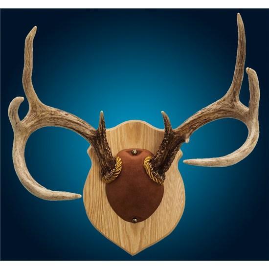 Solid Oak Antler Mount Kit | Walnut Hollow - Country