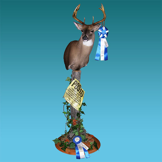 Two-Tier-Round-Oak-Taxidermy-Base-Deer-Mount