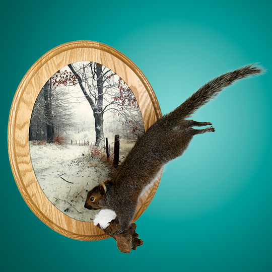 _Winter-3-Scenic-Wall-Plaque-Taxidery-Squirl-Mount-38989