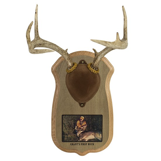 Rustic Deluxe Antler Photo Display