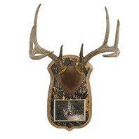 Camo Deluxe Antler Display Kit with Photo Frame