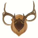 Traditional Antler Mount Kits