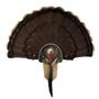 40940_40941_Turkey_Close_Up_Mount