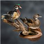 Wood Ducks | Mount by Tim Schloss | Walnut Round Base and Universal Display Bracket