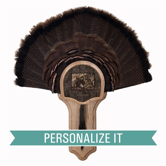 Personalized Turkey Tail Mount Taxidermy