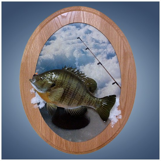 Ice Fish 1 Scenic Wall Plaque Walnut Hollow Country