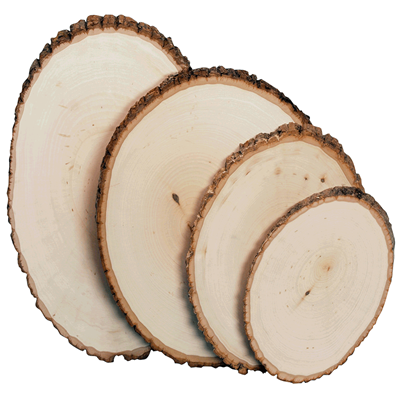 Basswood Country Round® wood panel with natural bark edging. Perfect for use in taxidermy mounts