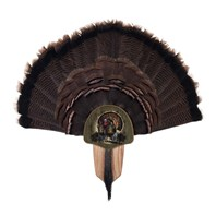 Turkey Display Kit, Oak Drumsticks