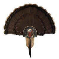 Turkey Display Kit, Oak Turkey Profile