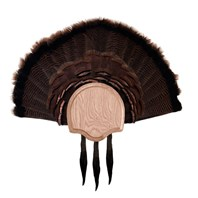 Three Beard Turkey Display Kit, Oak