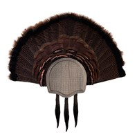 Rustic Three Beard Turkey Display Kit