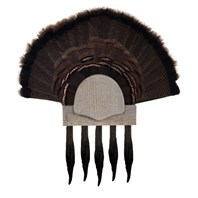 Five Beard Turkey Display Kit, Rustic
