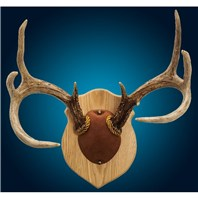 Solid Oak Antler Mount Kit