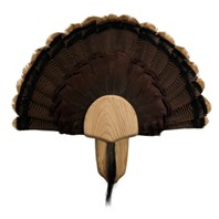 Solid Oak Turkey Display Kit