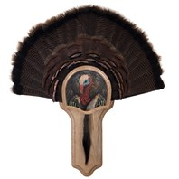 Deluxe Turkey Display Kit, Oak Turkey Profile