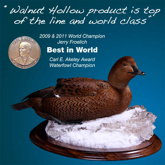 Oval-Taxidermy-Base-Walnut-King-Eider-Mount-with-Quote