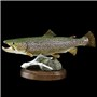 "Brown Trout | Mount by Don Frank ""2009 World Champion""–Don's Taxidermy 