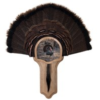 Deluxe Turkey Display Kit, Oak Eastern