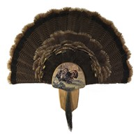 Turkey Display Kit, Oak Rio Grande