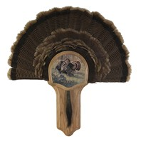Deluxe Turkey Display Kit, Oak Rio Grande
