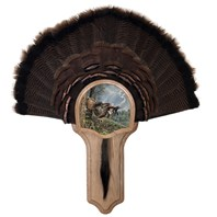 Deluxe Turkey Display Kit, Oak Double Strike
