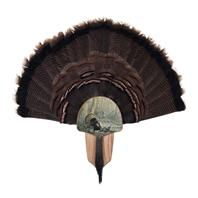 Turkey Display Kit, Oak Tom Foolery