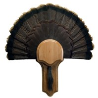 Deluxe Turkey Display Kit, Cherry